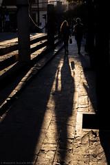 Sunset (ralcains) Tags: sevilla seville siviglia españa spain andalousia andalucia andalusia calle fotografiadecalle street streetphotography sunset atardecer abenddammerung tombedujour sombra ombre shadow contraluz backlighting 50mm canon eosr