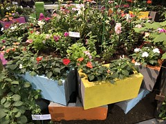 Creative Reuse (baccarati) Tags: flowershow phs philadelphiaflowershow flowers convention showcase philly tradeshow philadelphia pennsylvaniaconventioncenter pennsylvania garden cinderblocks cinderblock gardening creative