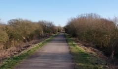 IMGP8069 (mattbuck4950) Tags: england unitedkingdom europe somerset northsomerset railways february visitswithmumdad disusedrailways yatton 2019 strawberryline gbr