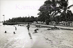 Fort DeRussy Beachfront 1950s (Kamaaina56) Tags: 1950s waikiki hawaii military fortderussy beach realphoto