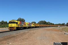 27 January 2019 P2506 P2517 P2508 1720 empty ore Narngulu (RailWA) Tags: railwa philmelling aurizon narngulu geraldton midwest p2506 p2517 p2508 mount gibson