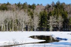 Adirondack Stream (fotofish64) Tags: landscape winterlandscape winter snow stream water wilderness unspoiled nature hamiltoncounty adirondackpark adirondacks southernadirondacks northernnewyork color blue beauty newyork outdoor pentax pentaxart kmount k70 hdpentaxda1685mmlens
