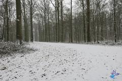 2019 - escapade hivernale