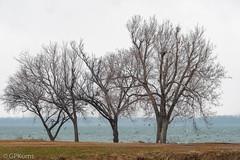 Very Cold Lake Overholser Oklahoma (Gary P Kurns Photography) Tags: myoklahoma onone nikon oklahoma nikond500 oklahomacity lake places overholser
