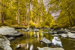 Peaceful (icemanphotos) Tags: calm alpine sunny nature water stone outdoor tranquil tree relax woods foliage background wild colorful landscape wildness river refreshing october autumn natural green scene red rock peaceful yellow beauty color rapid beautiful path leave golden park stream fall mountain creek forest