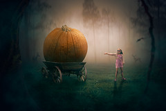 Emilys Pumpkin (Malcolm Hare Photography and Tuition) Tags: fantasy pumpkin forest light composite