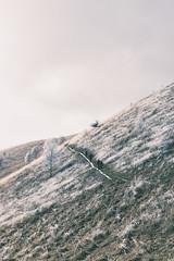 Bollettone - 12 (bumbazzo) Tags: monte boletto bolettone montagna montagne mountains mountain como italia italy landscape landscapes panorama panorami paesaggio paesaggi inverno winter