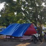 palu evacuation