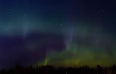IMG_8126 (Contact: krista.rosenlof@gmail.com (Fin, Eng)) Tags: revontuli revontulet aurora northernlights northern lights starts nightsky sky night goodnight
