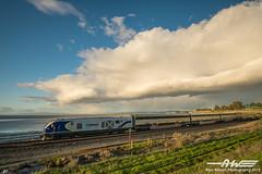 Late Afternoon (cadet_wilson) Tags: amtrak clouds siemens sc44 charger locomotive passenger trains railroad railways america san pablo bay area california cdtx 2106 locomotives calp caltrans