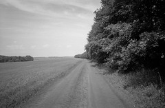 *** (PavelChistyakov) Tags: agfa apx iso100 film 35mm bw black white monochrome nature landscape field road trip tula region oblast village countryside slr camera canon