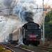 Arrivo del treno a vapore