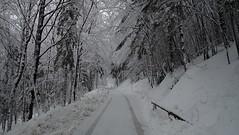 Heuberg (Automatikman) Tags: 0415mw 06012019 wandern wanderung heuberg salzburg salzburgerland austria winter schnee snow hiking flachgau