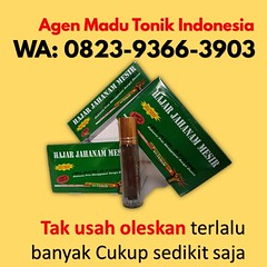 Obat Kuat Khas Makassar (jualobatkuatmakassar86) Tags: • alamat toko obat kuat makassar kota jual cod agen gasa di
