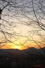 IMG_7554 (Pfluegl) Tags: graz österreich europe europa eu sunset chpfluegl chpflügl christian pflügl sonnenuntergang