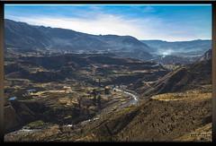 Valle del Colca - Perú (Fotocruzm) Tags: colca perú aandino fotocruzm mªcruzmatia valledelcolca kollawas cabanas ccaccatapay distrito de tapay distritodetapay arequipa condor chivay uyouyo yanque andes andino cañóndelcolca riocolca inca collaguas