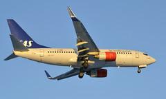 SAS SE-RJT, OSL ENGM Gardermoen. (Inger Bjørndal Foss) Tags: serjt sas scandinavian boeing 737 osl engm gardermoen