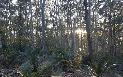 3488 Tathra Bermagui Road, Barragga Bay NSW 2546