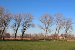 Flemish Landscape (Brian Aslak) Tags: lissewege westvlaanderen vlaanderen flanders flandre belgië belgium belgique europe landscape rural farm trees