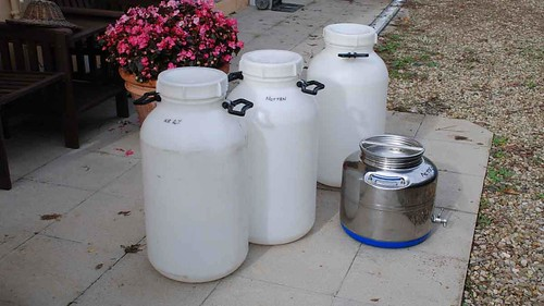 Clean containers for olive oil