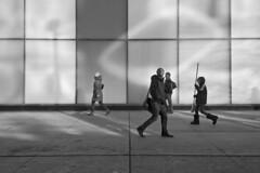 Toronto 2018_130 (c a r a p i e s) Tags: carapies cityscapes 2018 nikondf canada ontario toronto yongestreet bw blackwhite blancoynegro architecture arquitectura fotografiaurbana urban urbanphotography urbanidad urbvanidad urbvanity urbanphoto streetphoto streetphotography streetlife notasdeextramuros