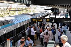 Sydney Metro - Metro trains at Cherrybrook (6) (john cowper) Tags: sydneymetro cherrybrook openday visitors trains metrosydneynorthwest transportfornsw infrastructure alstom suburbs sydney newsouthwales australia