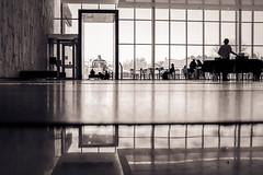 Split Horizon (ildikoannable) Tags: mono bw fujix100t building architecture pov horizon reflection