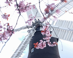 Holgate Windmill, York, with the five sails in focus