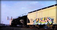 (timetomakethepasta) Tags: cash freight train graffiti art shpx grainer hopper