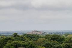 Mathikithi hill, Satara, Kruger National Park, Jan 2019 (roelofvdb) Tags: 2019 date january knp place satara year scenery