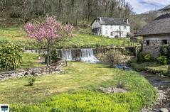Arette (https://pays-basque-et-bearn.pagexl.com/) Tags: 2019 64 aquitaine arette barétous béarn colinebuch france mars montagne nature pyrénées vallée