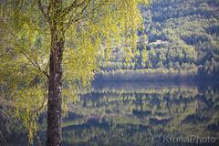 Spring reflection, Norway (KronaPhoto) Tags: 2018 natur vår