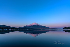 Reflection - Mt.Fuji (yamanaito) Tags: tokina firin 20mm fuji mtfuji lake yamanakako yamanashi japan dawn morning reflection
