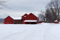 Scotia Barns (fotofish64) Tags: barn redbarn oldbarn snowcoveredroof freshsnow snow winter landscape winterlandscape agriculture farm rustic color red scotia smalltown schenectadycounty capitaldistrict newyork outdoor peaceful pentax pentaxart kmount k70 hdpentaxda1685mmlens glenville