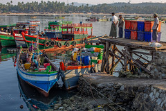 fresh catch arriving (David Mulder) Tags: myanmar burma rakhinestate fisherman boats ngapali beach