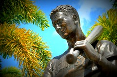 Ted Williams Statue -- Red Sox Splring Training at Jet Blue Park in Fort Myers, Florida (forestforthetress) Tags: statue tedwilliams jetbluepark fortmyers bostonredsoxspringtraining springtraining redsox bostonredsox man baseball unlimitedphotos