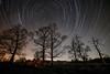 Wirral Startrail (Rob Pitt) Tags: wirral startrail samyang 14mm f28 sony a7rii urban trees night sky longexposure cheshire
