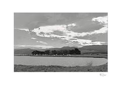 Lake (radspix) Tags: mamiya 645 1000s sekor 55105mm f45 ilford hp5 plus pmk pyro