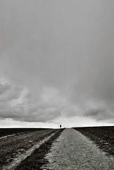 Big Skies (4), Avebury, April 2016 (Mano Green) Tags: sky skies cloud landscape field figure person silhouette black white grey canon canonet 28 ilford xp2 super 400 35mm film avebury wiltshire england uk spring april 2016