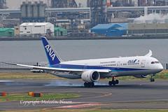 BOEING 787-9 JA891A ANA (shanairpic) Tags: jetairliner passengerjet b787 boeing787 dreamliner tokyo haneda ana allnippon ja891a
