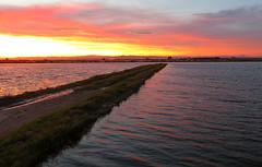 2018_12_15 Anochecer marjal  L'Albufera  PAz (69) (paz_pascual) Tags: albufera marjal parque natural de la atardecer luces reflejos colores agua campos cielo nubes pazpascual