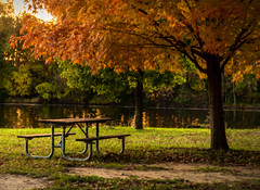 An Autumn Evening At The Park (Wes Iversen) Tags: benchmonday brighton hbm kensingtonmetropark michigan milford nikkor24120mm autumn autumncolor lakes leaves painterly picnictables reflections tables trees water