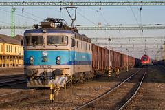 HZ 1141 102, Gyekenyes (josip_petrlic) Tags: eisenbahn zeleznice railroad railway railways željeznica željeznice zeljeznice zug hrvatske železnice train ferrovia locomotive lokomotiva locomotora electric hz 1141
