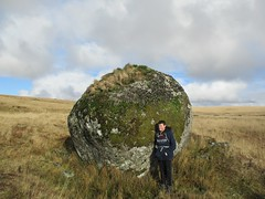 Giant's Marble and Max Piper SX 58230 71695 (Bridgemarker Tim) Tags: dartmoor scenes moorland tors outcrops