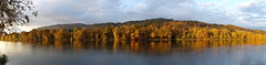 Panorama: Herbst am Rhein /  Autumn on the Rhine (b.kuehweidner) Tags: flus river rhein rhine herbst autumn gelb gold yellow golden wasser water panorama reflexion reflection thisisexcellent