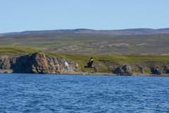 Husavik (jmarnaud) Tags: iceland 2018 summer family husavik harbour boat blue sky colors people house walk whale watching