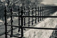 Standing guard (tonguedevil) Tags: outdoor outside countryside winter railings guards wall light shadow sunlight bw teesdale
