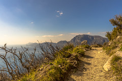 Sentiero degli Dei (feisas) Tags: italy campania amalfi bella sentierodeglidei path hiking hike walk mountains hills caost sunny remarkable adventure travel color colorful vivid cliffs nature fullframe sonya7 outdoor outside bagus indah grazie water sea light