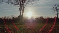 lens flare 3 (Ricardo's Photography (Thanks to all the fans!!!)) Tags: video b roll anthem park florida nature sony saintcloudfl centralflorida cinematic videolibrary freevideos 1080pvideos 1080p freefootage footage sonyvideos