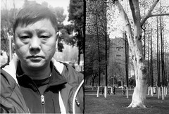 熊锅和树 (simon198909) Tags: smena8m polypanf50 半格 halfframecamera